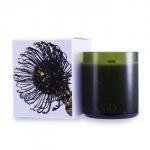 Botanika Multisensory Candle with Ecowood Wick - Taiga