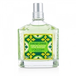 Winter Forest Home Perfume Spray