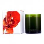 Botanika Multisensory Candle with Ecowood Wick - Clementine